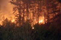 ORMAN YANGıNLARı - 'Orman Yangınlarının Yüzde 90'I İnsan Kaynaklı'