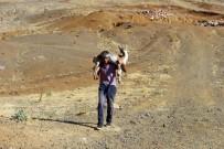 YAZıBAŞı - Yaralı Dağ Keçisini Kilometrelerce Sırtında Taşıdı