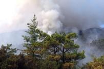 İTFAİYE ERİ - Antalya'daki Yangını Söndürme Çalışmaları Devam Ediyor