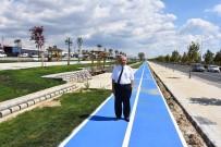 BÜLENT ECEVIT - Başkan Albayrak Bülent Ecevit Parkı'nı İnceledi