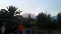 KARAÖZ - Antalya'da Yangın Bölgesindeki Hayvanlar Tahliye Edildi