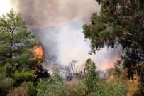 KARAÖZ - Antalya'daki Yangın 34 Saattir Devam Ediyor