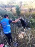 YABANİ HAYVANLAR - Bayburt Belediyesi Ekipleri Yaban Hayatını Unutmadı