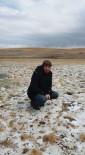 KAR YAĞıŞı - Erzurum'un Yüksek Kesimlerine Kar Yağdı