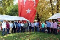 KARAKÖY - Sapanca'da 'Taze Ceviz Festivali' Başladı