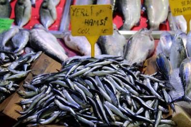 Sezonun ilk hamsisi 15 Lira'dan satılıyor
