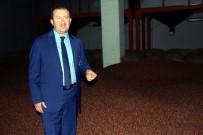 TARIM ÜRÜNÜ - TMO Genel Müdürü Kemaloğlu Açıklaması 'Fındık Üreticisi Acele Etmesin, Fiyat Arzu Ettikleri Seviyeyi Bulacak'