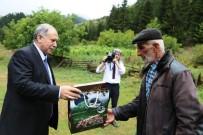 DERİNER BARAJI - Vali Doğanay Ormancılık Faaliyetlerini Yerinde İnceledi