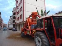 FINDIK HASADI - Vatandaşlara 'Fındık Kavşağı' Uyarısı