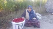 GÖNENLI - 94 Yaşındaki Zeliha Gönenli Açıklaması Sağlıklı Ve Uzun Yaşamanın En Büyük Sırrı Doğal Beslenmek