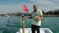 ÇINGENE - Amatör Balıkçılar Kovalarını Balıkla Doldurdu