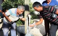 OSMAN GÜRÜN - Bir Asır Sonra Gelen Suyu Davul Zurna İle Karşıladılar