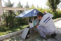 KÜÇÜKÇEKMECE BELEDİYESİ - Sokak Hayvanları Bu İstasyonlarda İhtiyaçlarını Karşılıyor