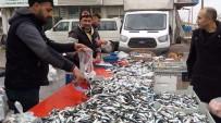 ALABALIK - Alabalık Ve Palamut'un Kilosu 12 Liradan Satılıyor