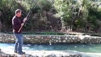 ALABALIK - '3 Bin Balığım Sulara Gitti'
