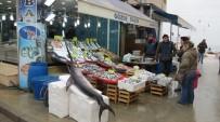 OKYANUS - Dev Kılıç Balığı Görenleri Şaşkına Döndürdü
