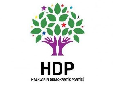 HDP'de ırkçılık tartışması sonrası istifa