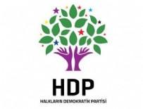 HDP - HDP'de ırkçılık tartışması sonrası istifa