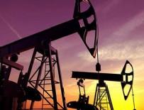 KÜRESEL ISINMA - En büyük 5 enerji firmasına flaş dava