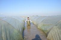 AŞIRI YAĞIŞ - 'Şiddetli Yağışların Zararı 115 Milyon Lira'