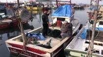 KÜRESEL ISINMA - Balıkçıların Kar Yağışı Beklentisi