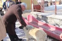 Başkan Karaçanta Açıklaması'sokak Hayvanlarına Hep Birlikte Sahip Çıkmalıyız'
