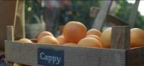 REKLAM FİLMİ - Cappy'nin Yeni Reklam Filmi Yayına Girdi