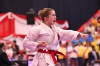 SAĞLIK RAPORU - Karate Aday Hakem Kursu Açılacak