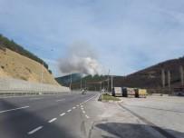 ORMAN YANGINI - Orman Yangınları Aralıkta Da Bitmedi