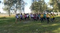 ŞEHİT ÜSTEĞMEN - Osmaniye'de Okullar Arası Kros Yarışmaları Yapıldı