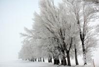 PAMUKKALE - Yurttan Kış Manzaraları