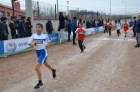 MEHMET DEMIR - Diyarbakır'da Atletizm Müsabakaları Sona Erdi