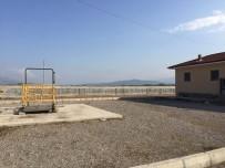 TANOBA - Erbaa'da Hayvan Pazarı Kapatıldı
