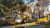 ONARIM ÇALIŞMASI - İzmit'te Parklar Bakımdan Geçiyor