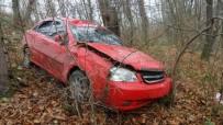 Otomobil Ormana Uçtu Açıklaması 1 Yaralı