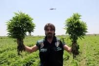 ÖZEL HAREKAT POLİSLERİ - (Düzeltme) Adana'da 1 Yılda 48 Milyon 616 Bin Liralık Uyuşturucu Ele Geçirildi