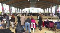 DOBERMAN - İzmir'de 'Köpek Irkları Yarışması'