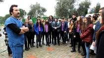 Liseli Gençler Barınaktaki Can Dostlarını Ziyaret Etti