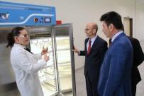 LABORATUVAR - Rektör Karacoşkun, Araştırma Laboratuvarını İnceledi