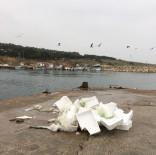 Teknelerin Meydana Getirdiği Kirliliğe Tepki