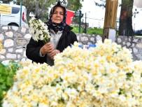 AZIZ KOCAOĞLU - İzmir'de Nergis Kokulu Günler Başladı