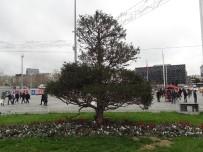 TAKSIM - Taksim Meydanına Serçe Akını