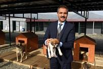 KARANTINA - Turhal'da Hayvan Ambulansı Hizmete Giriyor