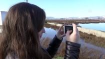 GÖÇMEN KUŞLAR - Tuzla Sulak Alanı Göçmen Kuşları Ağırlıyor