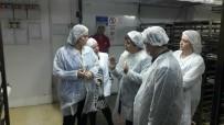 FABRIKA - Antalya Halk Ekmek'ten 7/24 Üretim