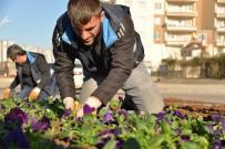 Bağcılar'da Çiçek Dikim Çalışmaları Devam Ediyor