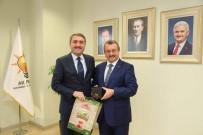 ÇAYKUR - ÇAYKUR  Genel Müdürü  İmdat Sütlüoğlu'ndan AK Parti İstanbul İl Başkanlığı'na Ziyaret