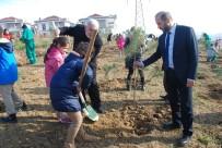 FİDAN DİKİM TÖRENİ - İzmit'te Kafkaslar İçin Hatıra Ormanı