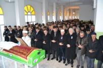 FATIH ÜRKMEZER - Karabük'ün Asırlık Çınarı Vefat Etti