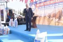 MEHMET TAHMAZOĞLU - Bakan Fakıbaba'dan Afrin Değerlendirmesi